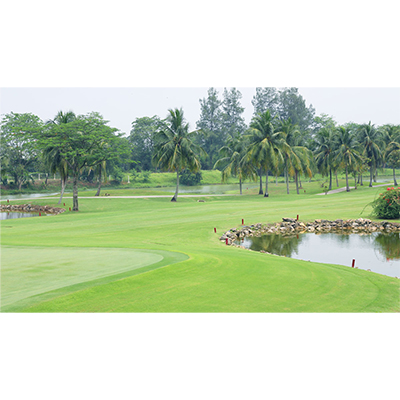 Lotus Lake Golf